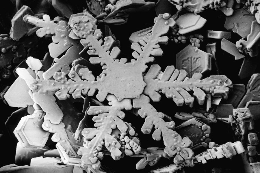 Snowflake Magnified